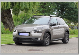 C4 CACTUS BlueHDI 100 BVM5 Olive Brown/Dune Shine +TPV/RdS/2014